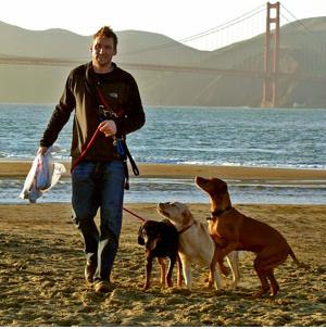 Purebred Breeders Super Dog Walking
