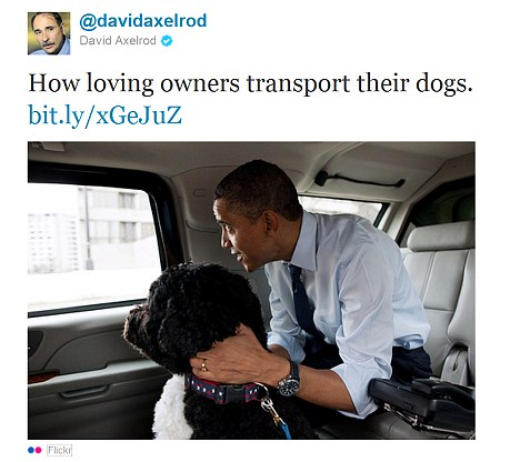 Purebred Breeders Barack Obama Dog