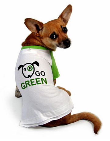 Purebred Breeders dog green environment
